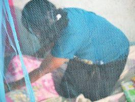 Cegah Malaria Pasca Gempa dengan Kelambu